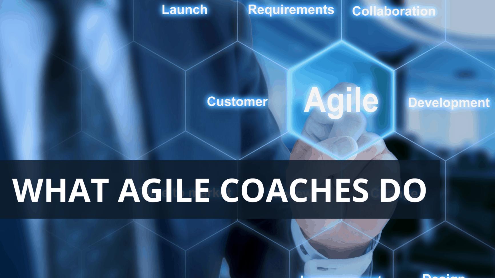 What Agile Coaches Do
